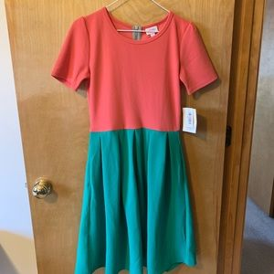 {NWT} Lularoe s Amelia dress, pink & green